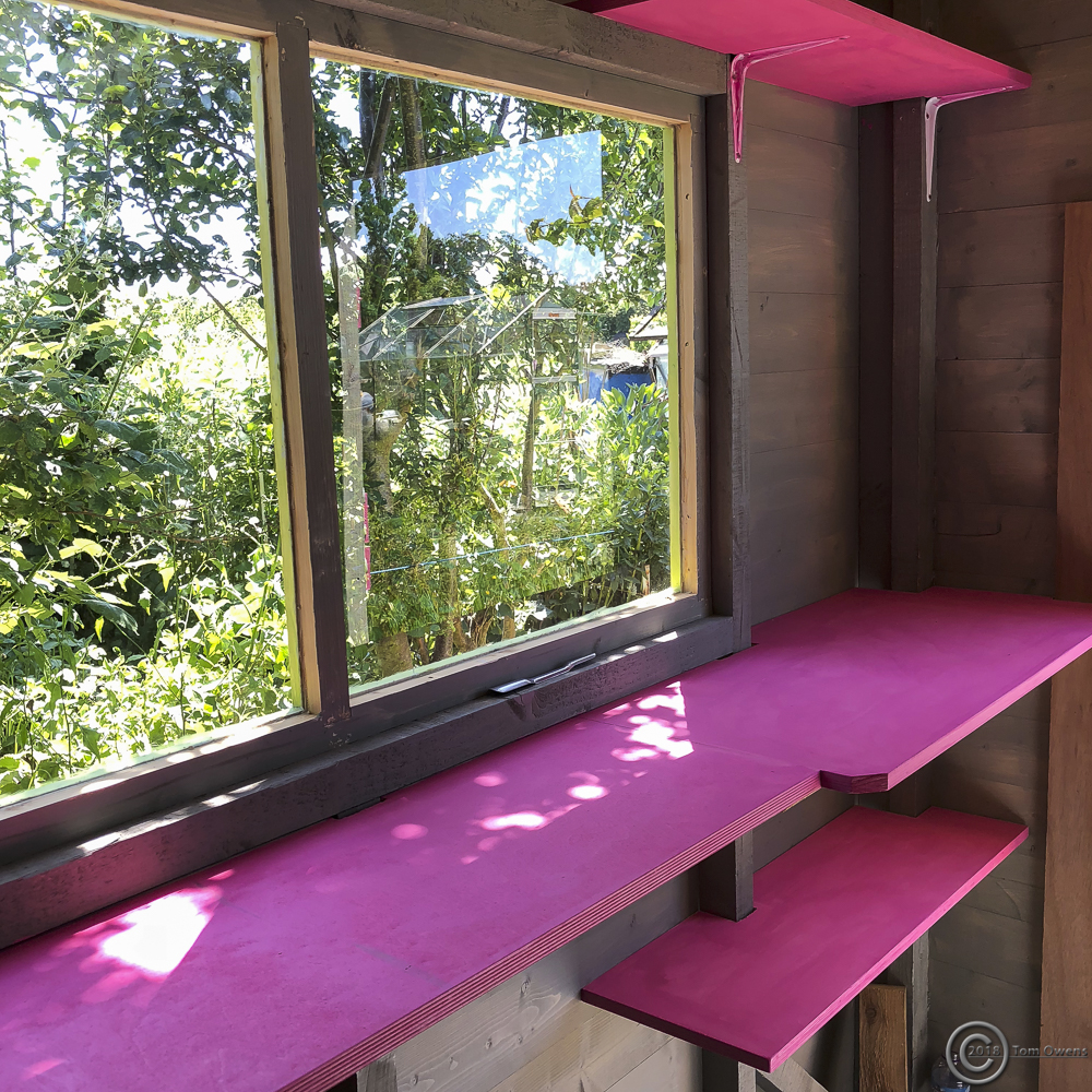 Pink shelves in shed